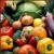 Harvill's Produce Co