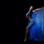 World Dance Entertainment Intl. (Sevdha.com)