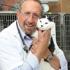 Animal Farm Pet Hospital