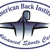 American Back Institute