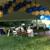 Party Shop Of Berwyn Ltd