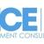 DICE Management Consultants, LLC