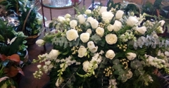 All Occasions Gifts & Flowers - Indianapolis, IN