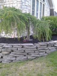 Nemeth Property Maintenance & Lawn Care, LLC