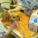 Green River Veterinary Hospital