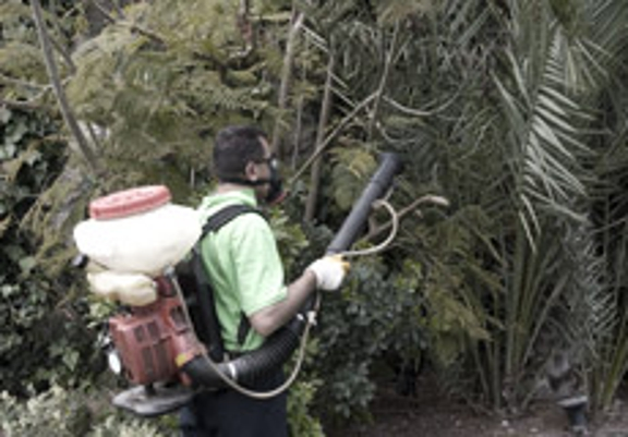 Hawthorne Brothers Tree Service, Inc. - Bedford Hills, NY