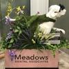 Meadows Dental Associates