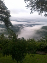 Fog in-the-Valley view