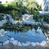 Normal Aquatics Aquarium & Pond Service