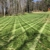 Green Stripes Landscaping