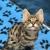 Magnolia by the Gulf Veterinary Animal Clinic