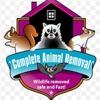 Catawba Wildlife Control LLC