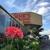 Sink's Flower Shop & Greenhouse
