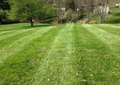 The Lawn Care Specialists 213 Walters St, Ripley, WV 25271
