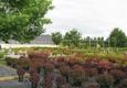 Four Season Nursery - Traverse City, MI
