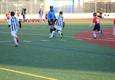 Alba Soccer Association Inc - Bronx, NY