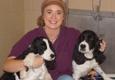 Best Friends Animal Hospital & Pet Hotel - Fayetteville, AR