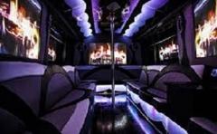 Party bus limo houston 24/7