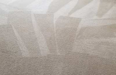 Bronco Pro Kleen Carpet Cleaning Denver - Lakewood, CO. my carpets look amazing!