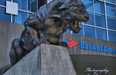 Bank of America Stadium - Charlotte, NC
