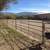 Mesquite Oasis Ranch