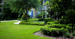 all around town lawn services - palm harbor, FL