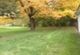 Lawn Specialties - Decatur, IL