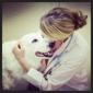 Downtown Pet Hospital - Orlando, FL. Dr. McCully & Tripper!