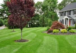All Seasons Lawn Care 822 W Central Ave Phillipsburg Nj