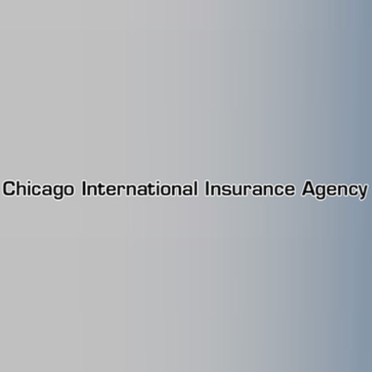 Chicago International Insurance Agency 449 W 31st St, Chicago, IL ...