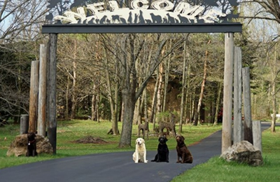 Fort Hyde Kennels Inc. - Gasport, NY