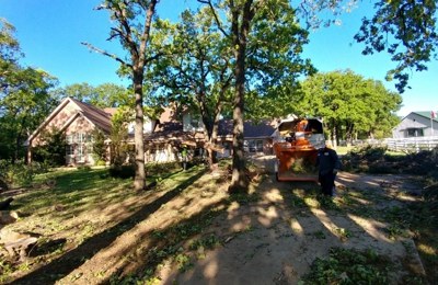 Sal's Landscape & Tree Service (RECOMMENDED) - Fort Worth, TX