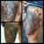 EC Tattoo & Body Piercing