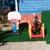 Kids Imaginarium