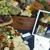 Bistro Catering & Gourmet Take Away