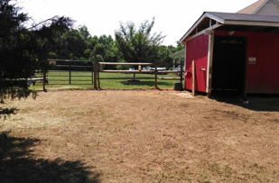 Beautiful horse shed and fencing done by Creed's Home improvement