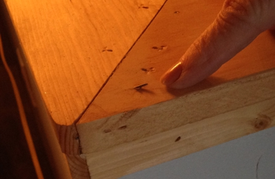 Grizzly Services - Wasilla, AK. Nail protruding from new banister