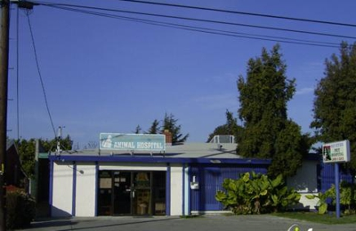 Bay Cities Animal Hospital - Hayward, CA
