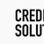 LSI Credit Solutions