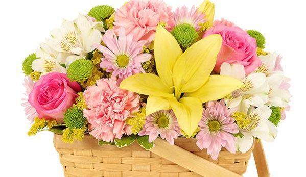 Keser's Flowers - Glastonbury, CT