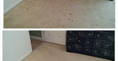 Magic Marty's Carpet Cleaning