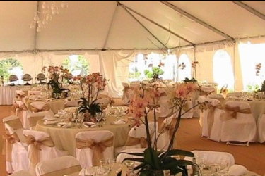 Belle's Carousel Party & Tent