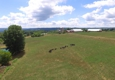 CBG Farm - Syracuse, NY