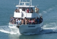 Obsession Fishing Charters - Cape Canaveral, FL