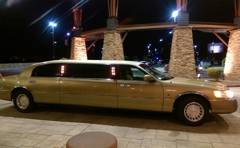 A1 Limousine & Transportation Services