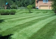 Wise Lawn care & Landscaping LLC - Jamestown, OH