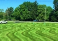 Dalpon Lawn Care - Indianapolis, IN
