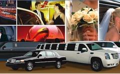 All Airport Sedan & Limousine Service