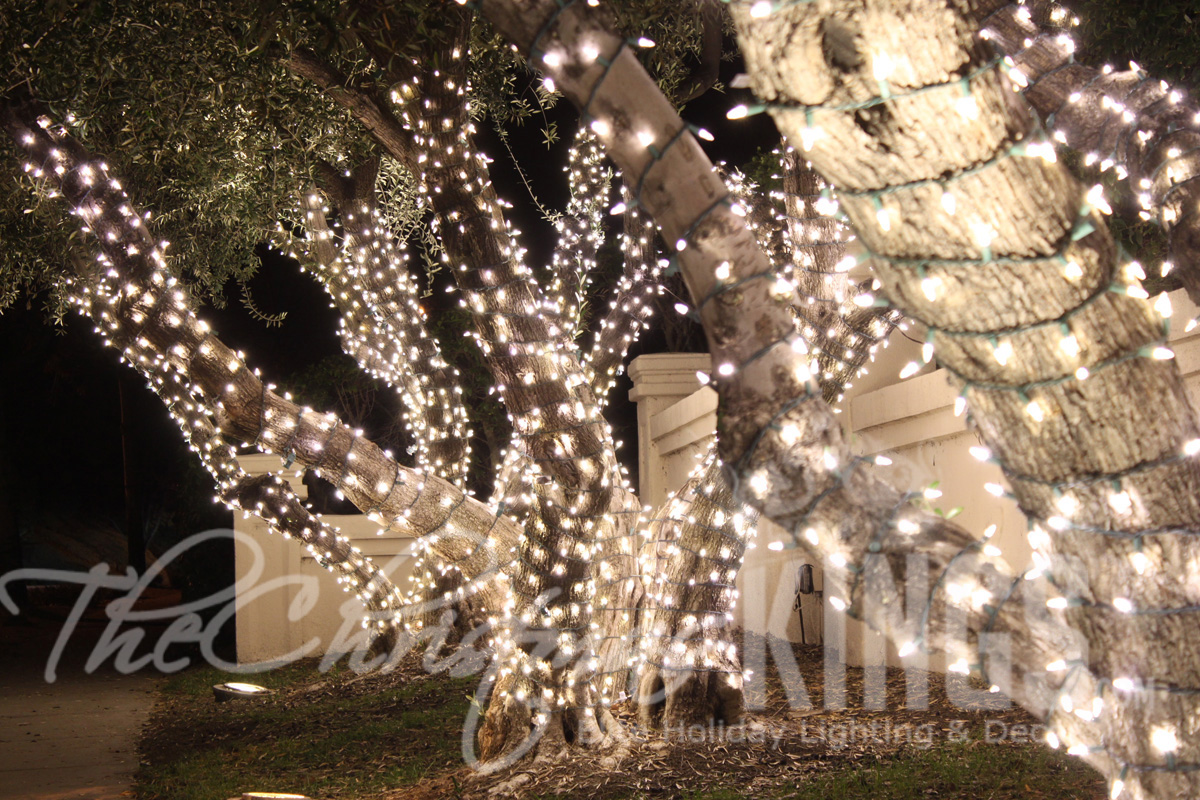 Christmas King Light Install Pros Anaheim 9852 Katella Ave 217 CA 92804