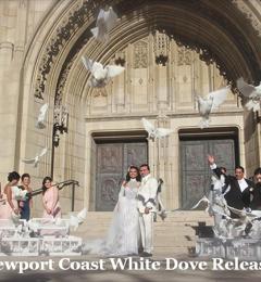Los Angeles White Dove Release San Gabriel Ca
